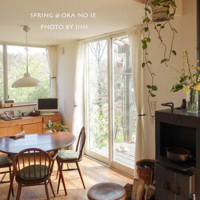 丘の家 4回目の春 猫たちとインテリアとお庭と